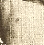 Haarklein (49k image)