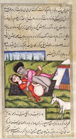 L0033242 Persian couple copulating