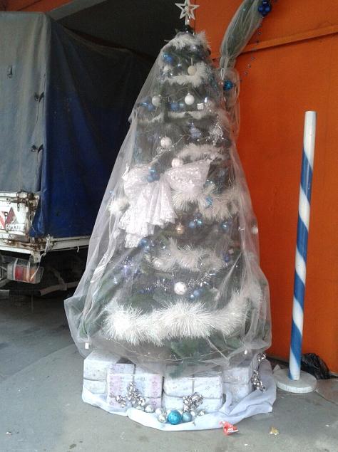KerstKameroen